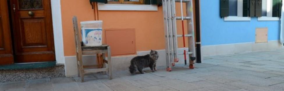 イタリア:ベネチア離島の美しい街と猫